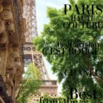 the EDIT - Paris Haute Couture July 2017