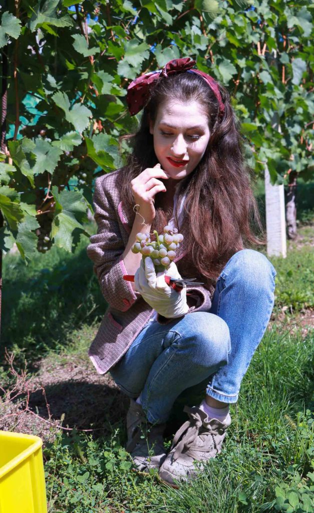 Fashion Blogger Veronika Lipar of Brunette from Wall Street eating grapes at the grape harvest wearing retro printed tweed blazer, blue mom jeans, bobby sneaker, head scarf, gloves