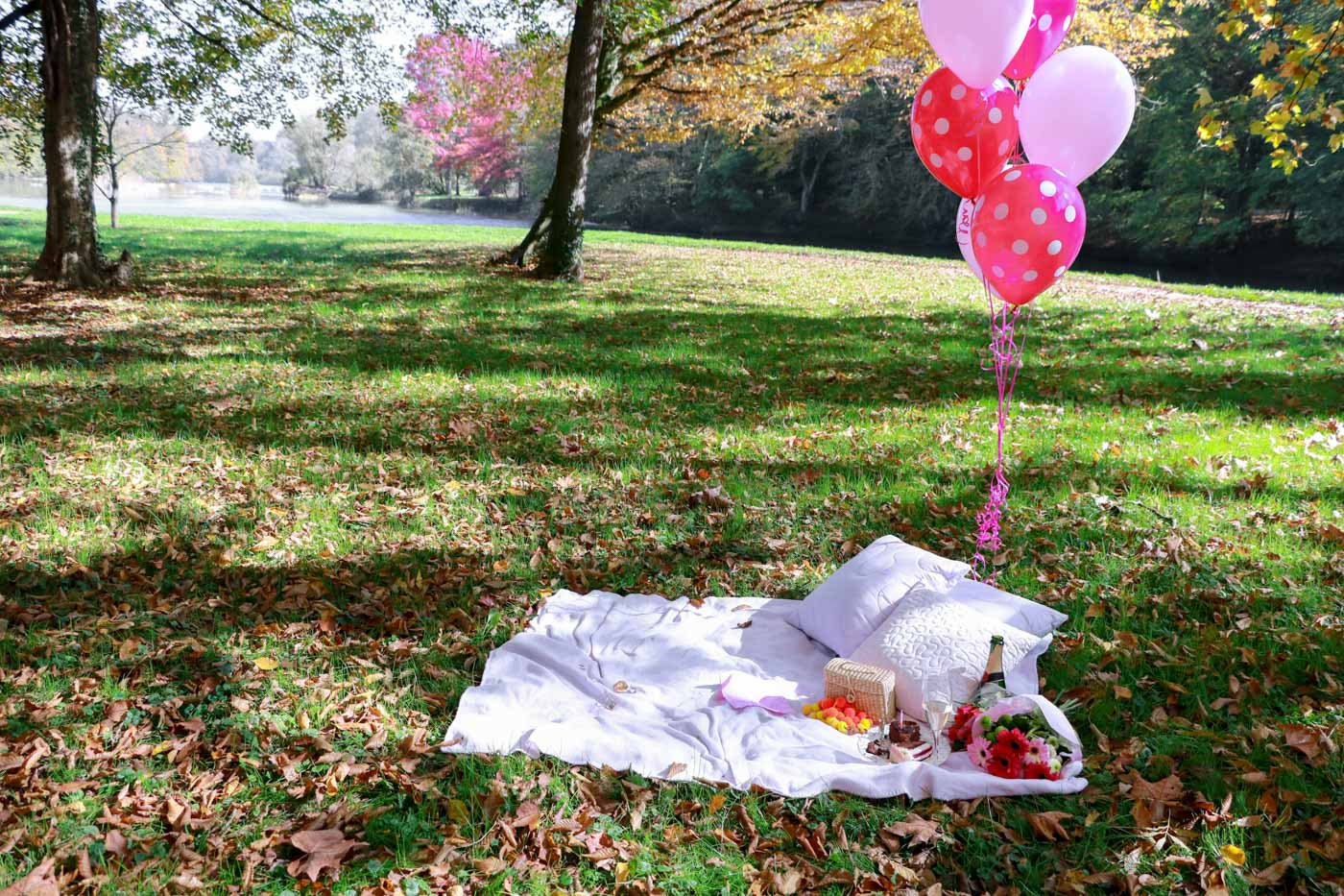 autumn picnic for birthday party